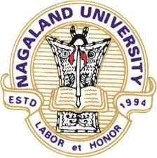 Analytical Group NagalandUniversity